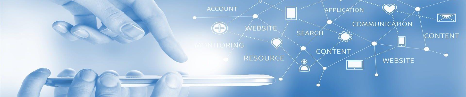 Profesjonalne Usługi Informatyczne